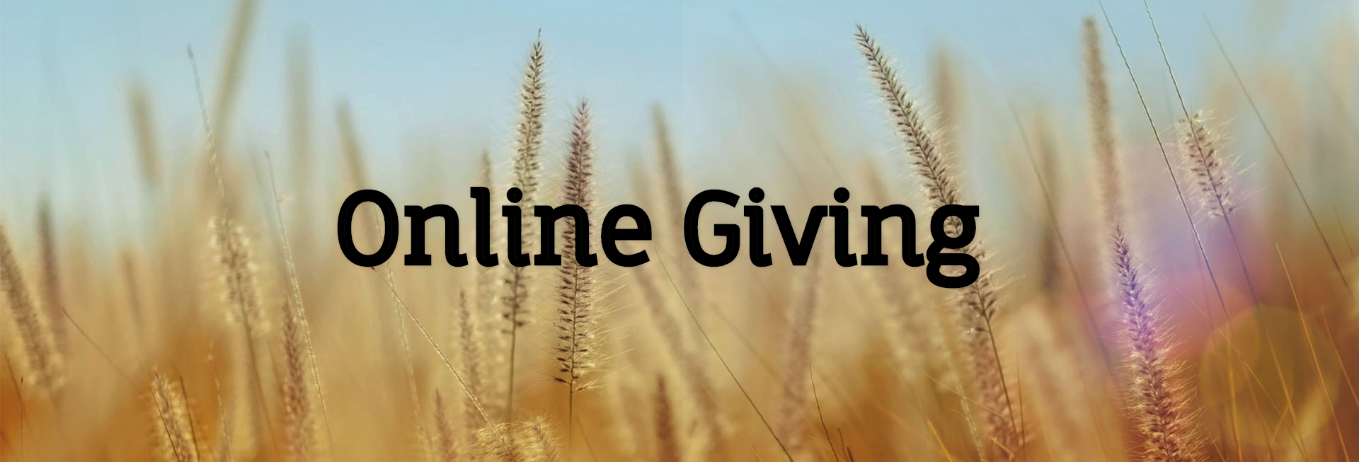 online giving to dsumc